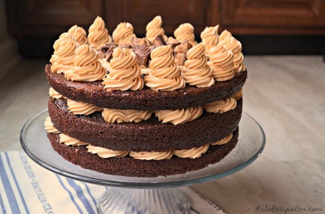 Chocolate Peanut Butter Cake 3